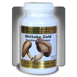 Shiitake Gold kapsuly - Balenie 90 kapsúl, 500 mg.