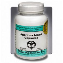 Agaricus blazei kapsuly - Balenie 90 kapsúl, 500 mg.